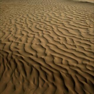 Wind in the Desert