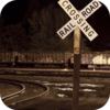 Coyote Train Duet