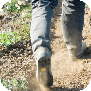 Footsteps Through Dirt