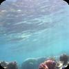 Submerged Underwater