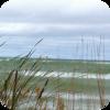 Lakeside Wind