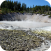 Yellowstone Boiling Mud