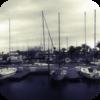 Windy Port