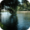 River Wind