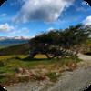 Tierra del Fuego Wind