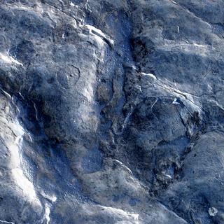 Jurassic Footsteps
