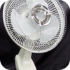 Fan - Oscillating