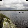 Loch Rannoch Waves