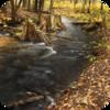 Dutchess County Stream