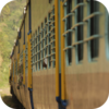 Rajasthan Train