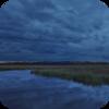 Stormy Marsh