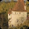 Tallinn Forest